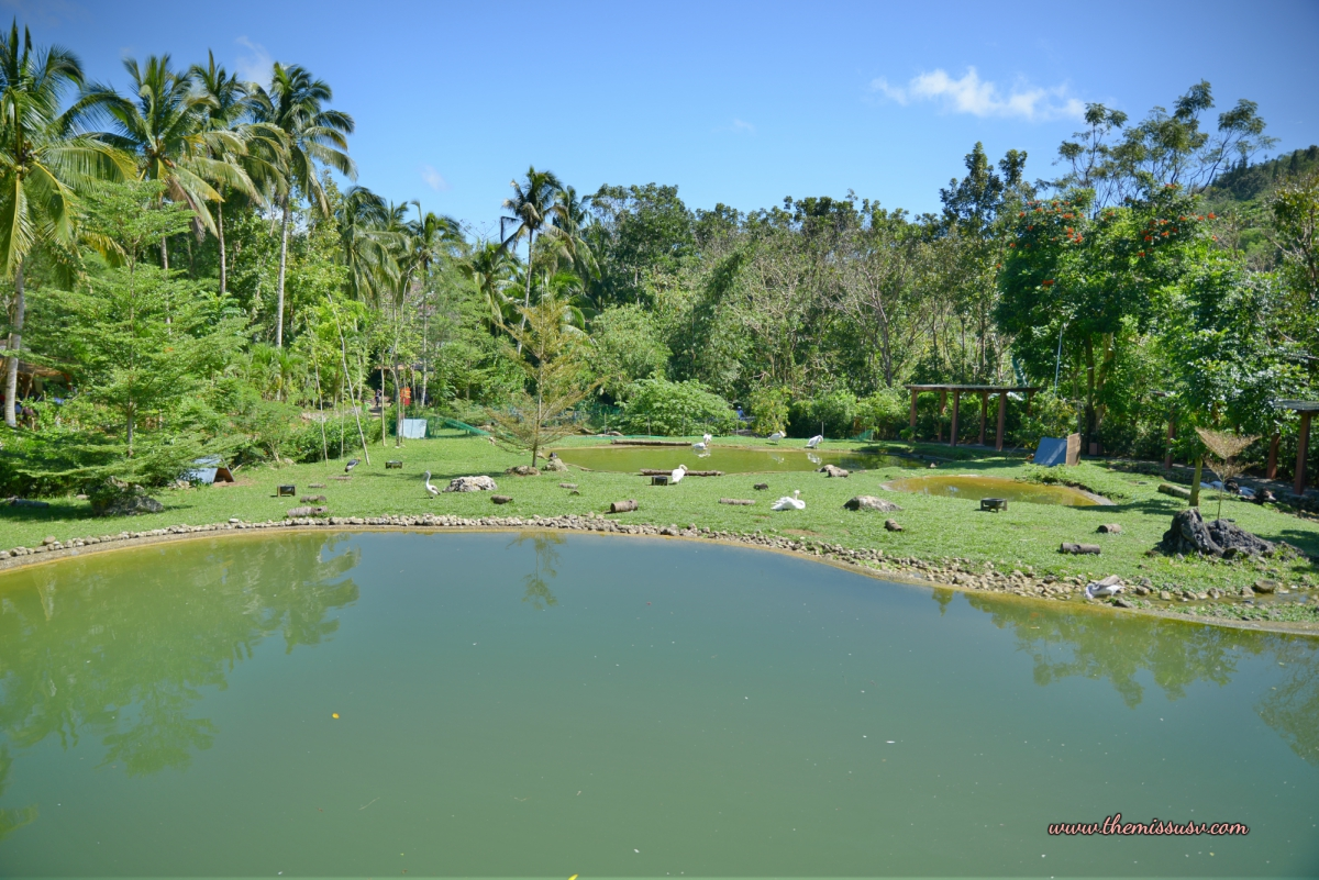 Cebu Safari and Adventure Park - Man-made Lagoon