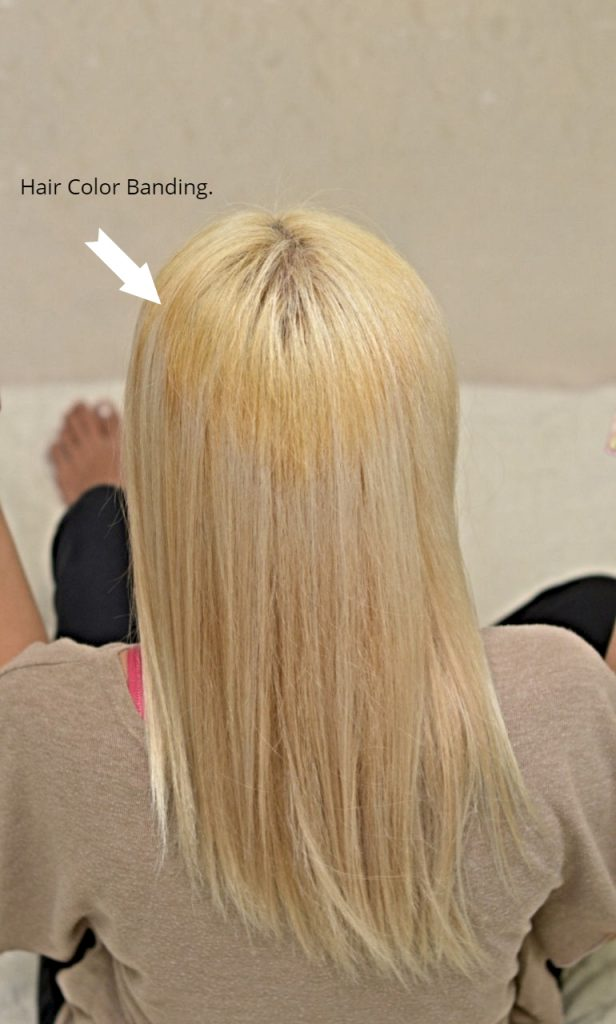 How to Dye Asian Hair White (at Home & Without Breaking the ...